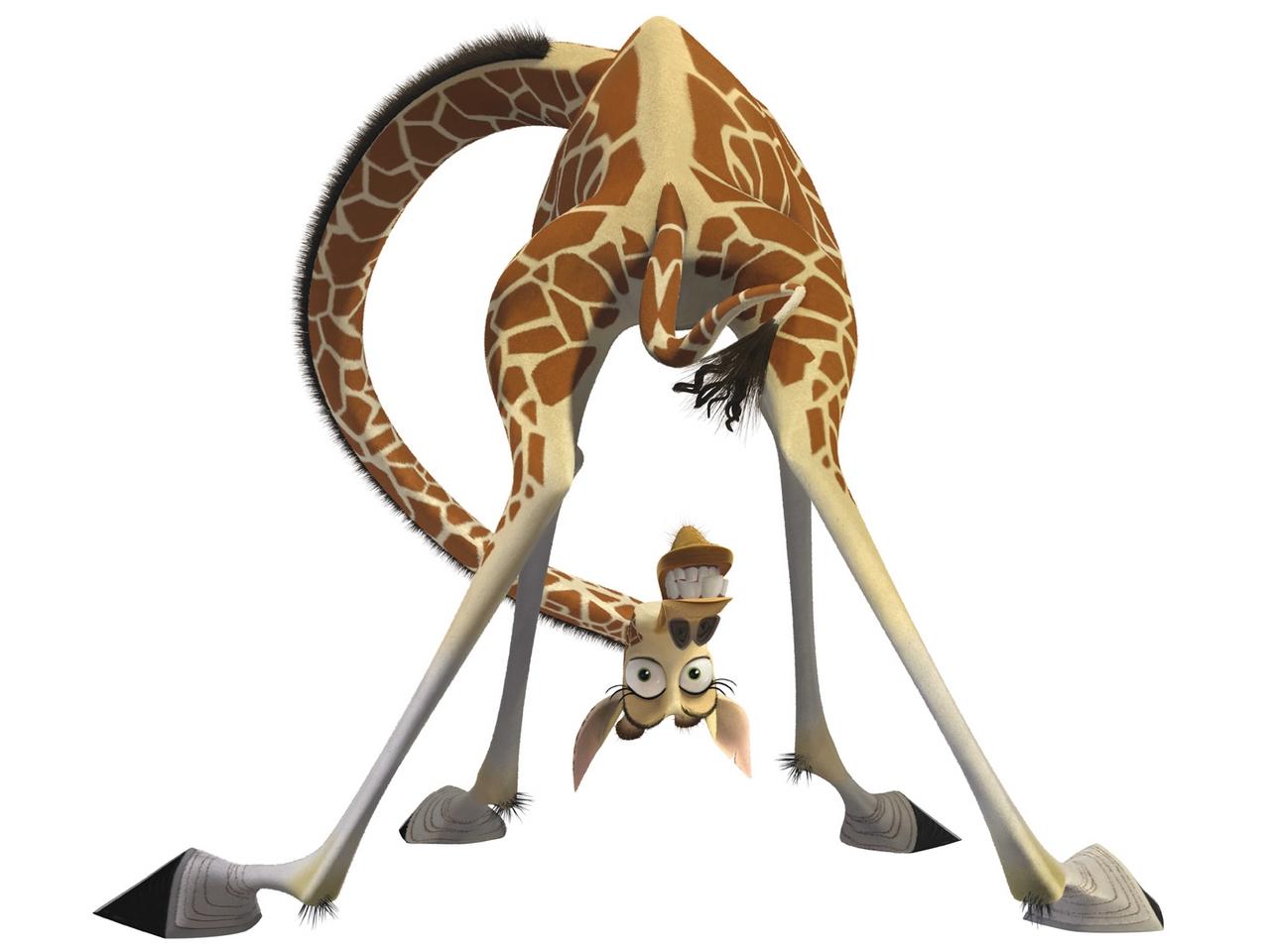 Wiersze Dla Dzieci żyrafa U Fotografa Gdybymbyłaktorem